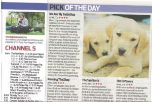 dog-rescuers-Daily Mail Weekend pg 45