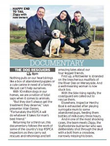 dog-rescuers-Daily Mirror May 19th