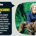 dog-rescuers-series-4-5-daily-mail-weekend