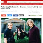 dog-rescuers-series-4-5-gloucestershire-live