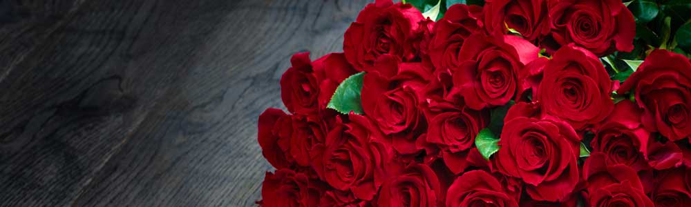 Only Roses Image