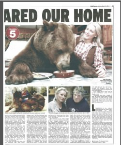 Middle Child Daily Express 2