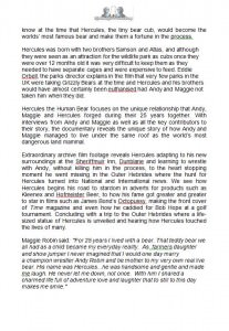 Middle Child Press Release 2