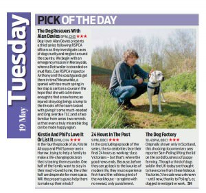 dog-rescuers-Daily Mail Weekend 2