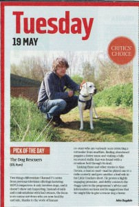 dog-rescuers-Sunday Times Culture pick of the day