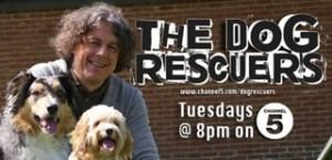 the-dog-rescuers-channel5